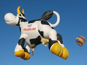 pic of cow balloon