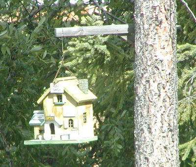 picture of fancy birdhouse