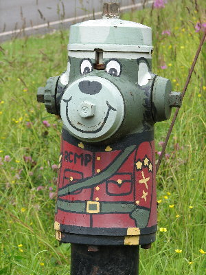picture of an RCMP-painted hydrant